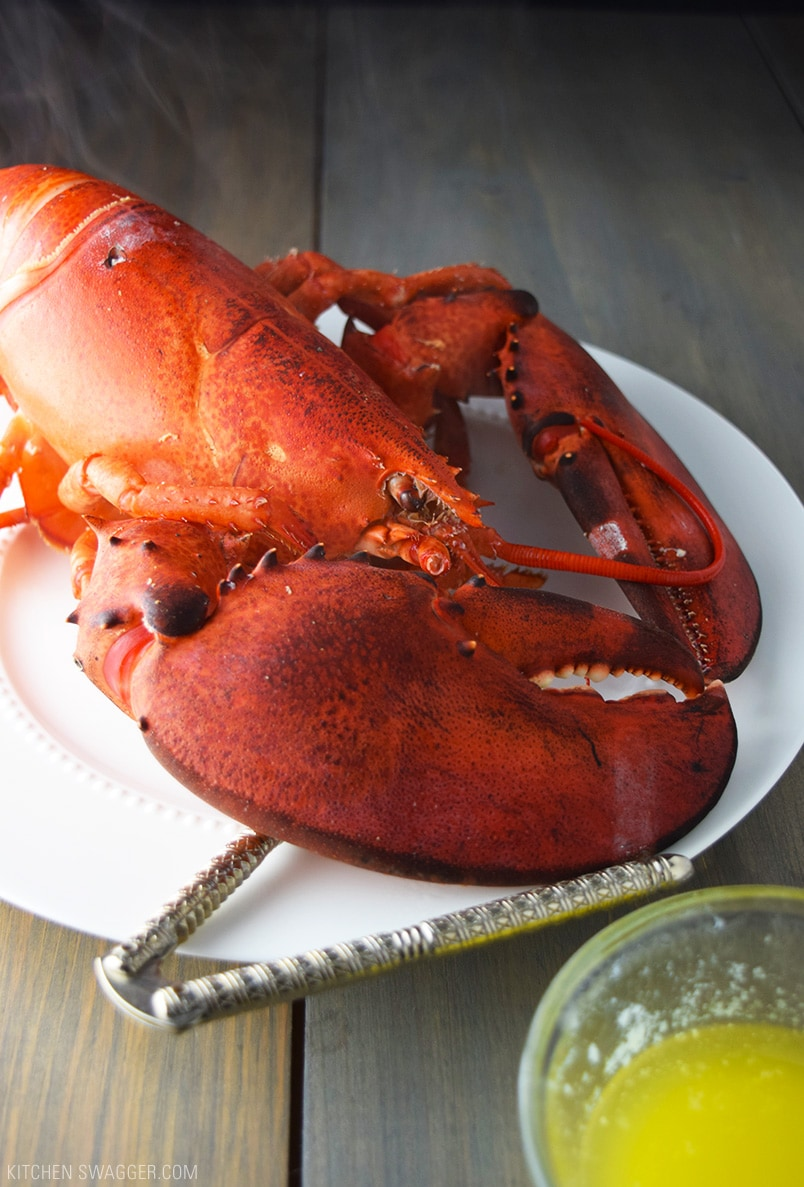 fancy lobster recipes - HD 804×1187