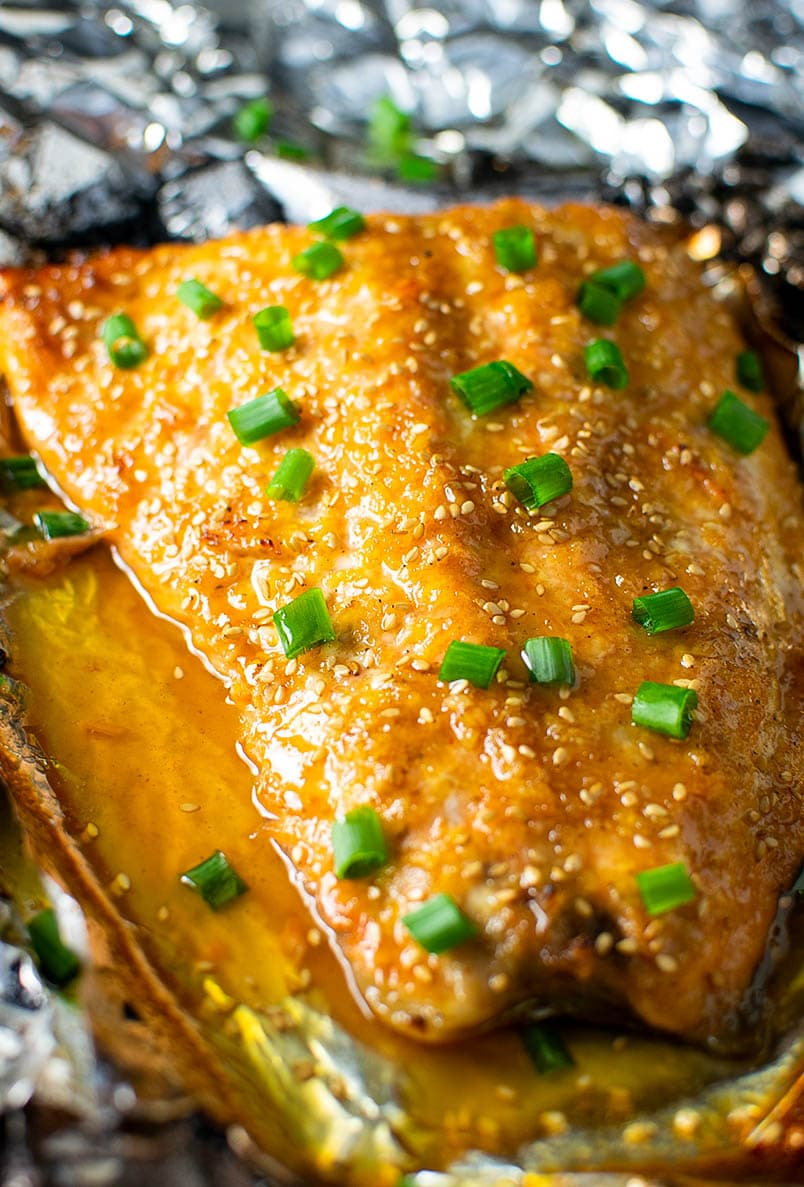 Sesame Ginger Salmon in Foil Recipe