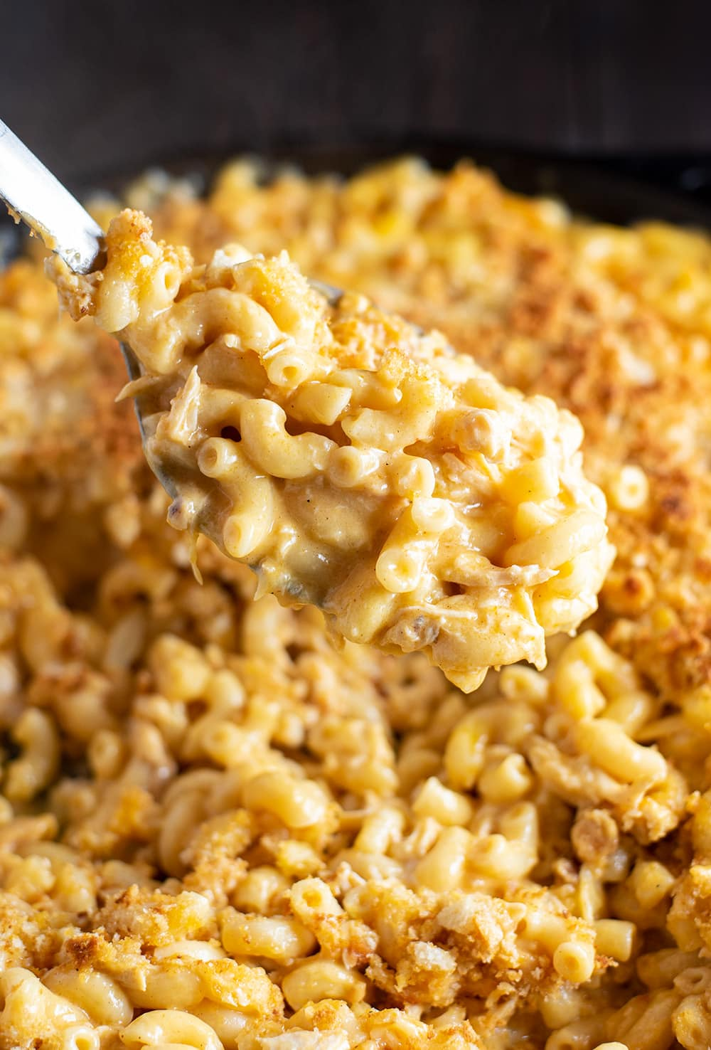 Buffalo Chicken Mac and Cheese Recipe